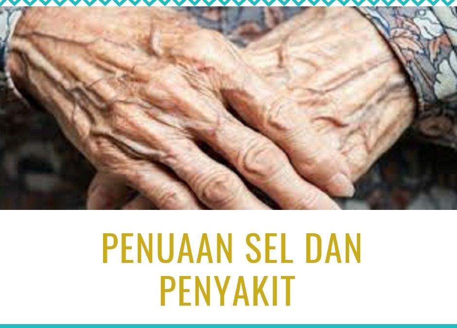 Penuaan Sel dan Penyakit